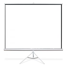 Projector Screen, 8' X 8'